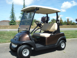 Club Car Precedent for sale