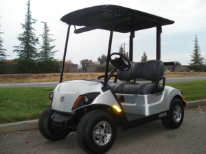 2018 Yamaha Drive2 AC PTV, Moonstone metallic color, 2-passenger, available at $8,120