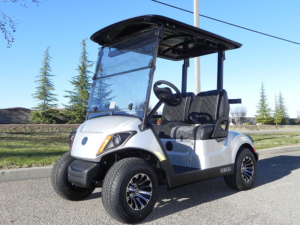 Moonstone metallic color, 2-passenger, available at $8,970