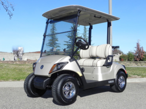 Sandstone metallic color, 2-passenger, available at $8,220