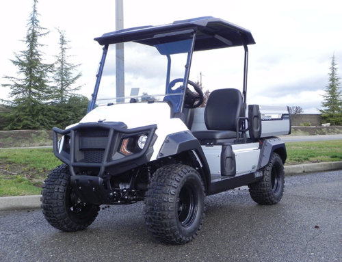 2019 Yamaha UMAX 2 Rally EFI (Gas)