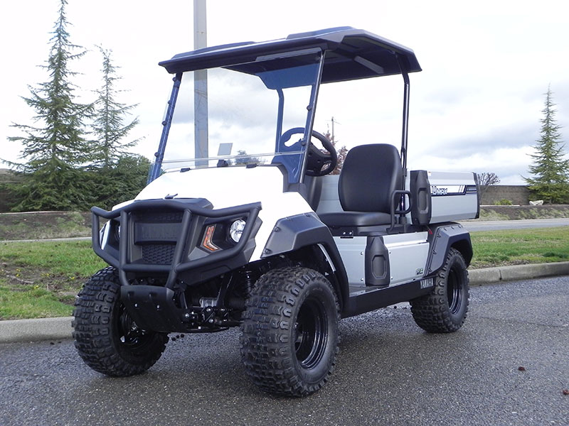 2018 Yamaha UMAX 2 Rally EFI (Gas)