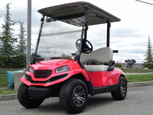 Reconditioned 2016 Yamaha Drive AC