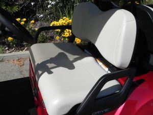 2021 Yamaha Drive2 AC PTV